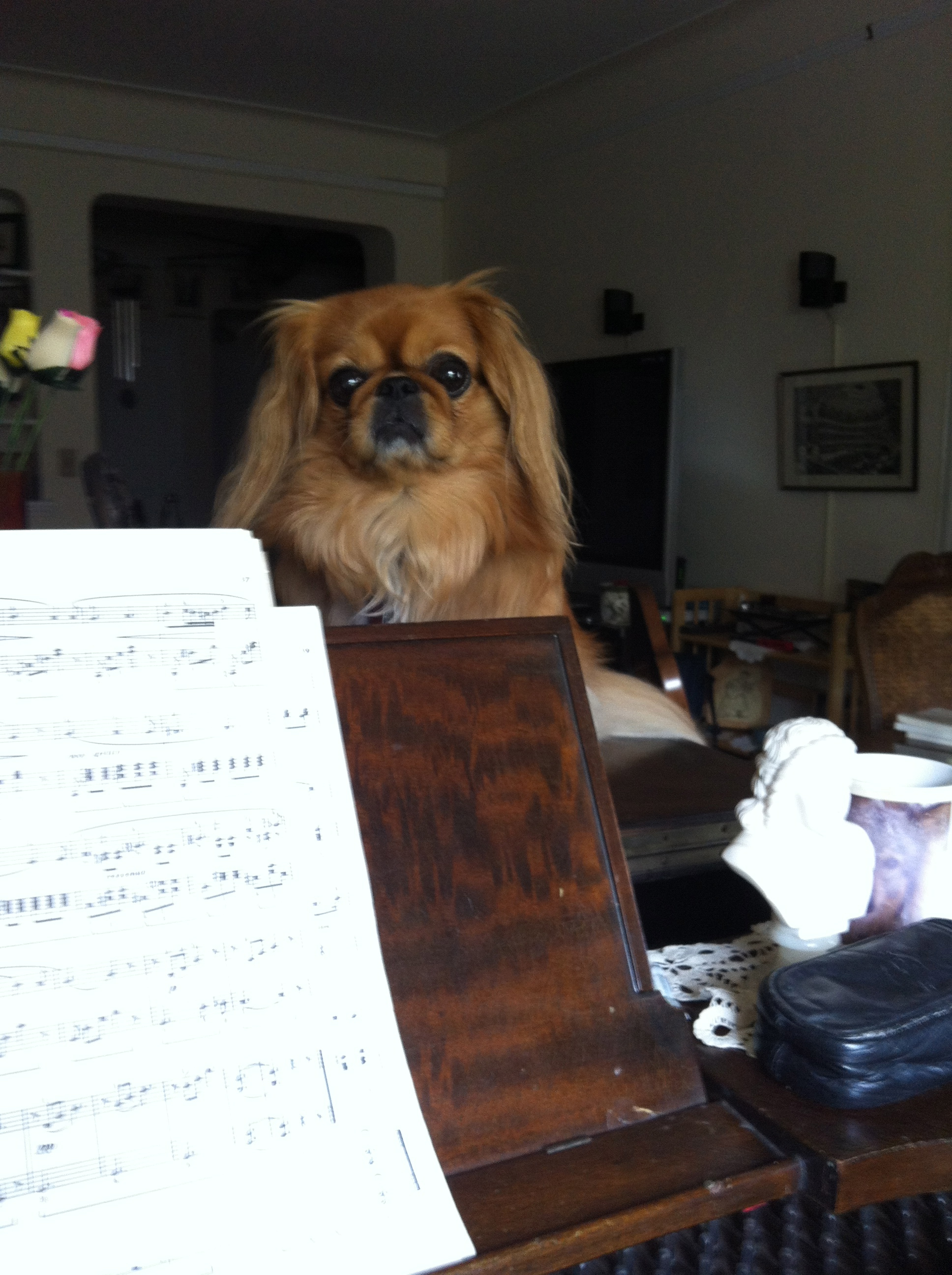 I am still here listening to your Chopin!